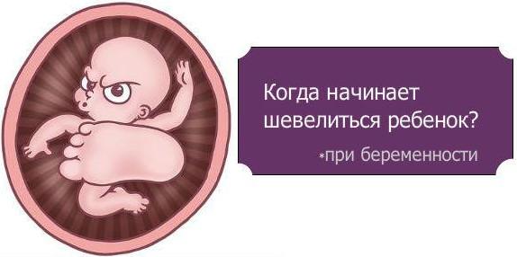 shevelenia www.u-children.ru